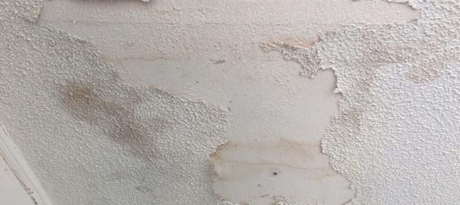 humedades en paredes
