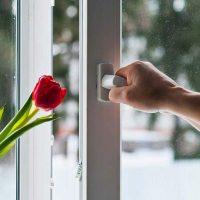 El ahorro de dinero al utilizar ventanas de PVC