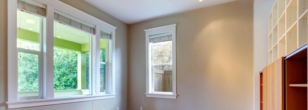 LM INGECON Color de las ventanas